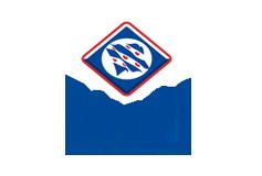 frieschevlag_logo